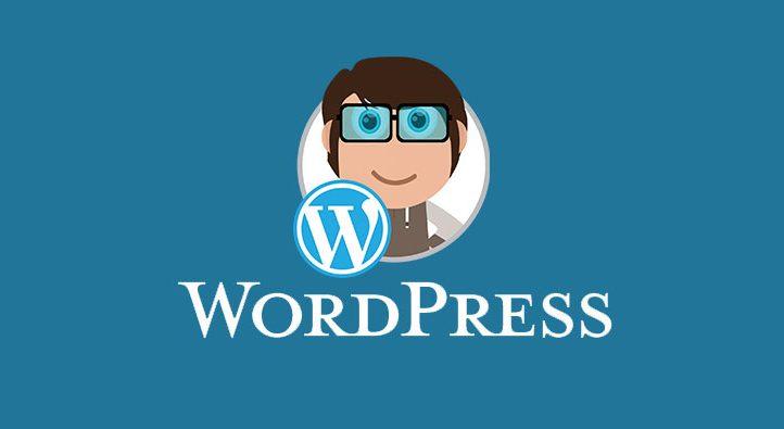 Nieuwe WordPress update – Versie 4.9