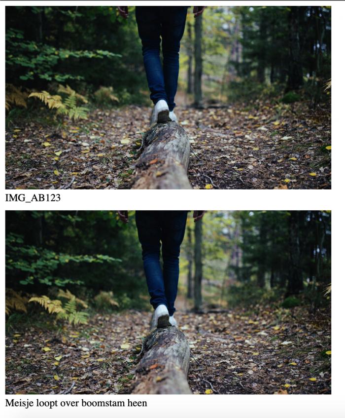Twee foto's met een onderschrift waarvan er 1 de foto omschrijft en de ander niet.